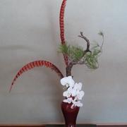 酉年を祝う花の画像